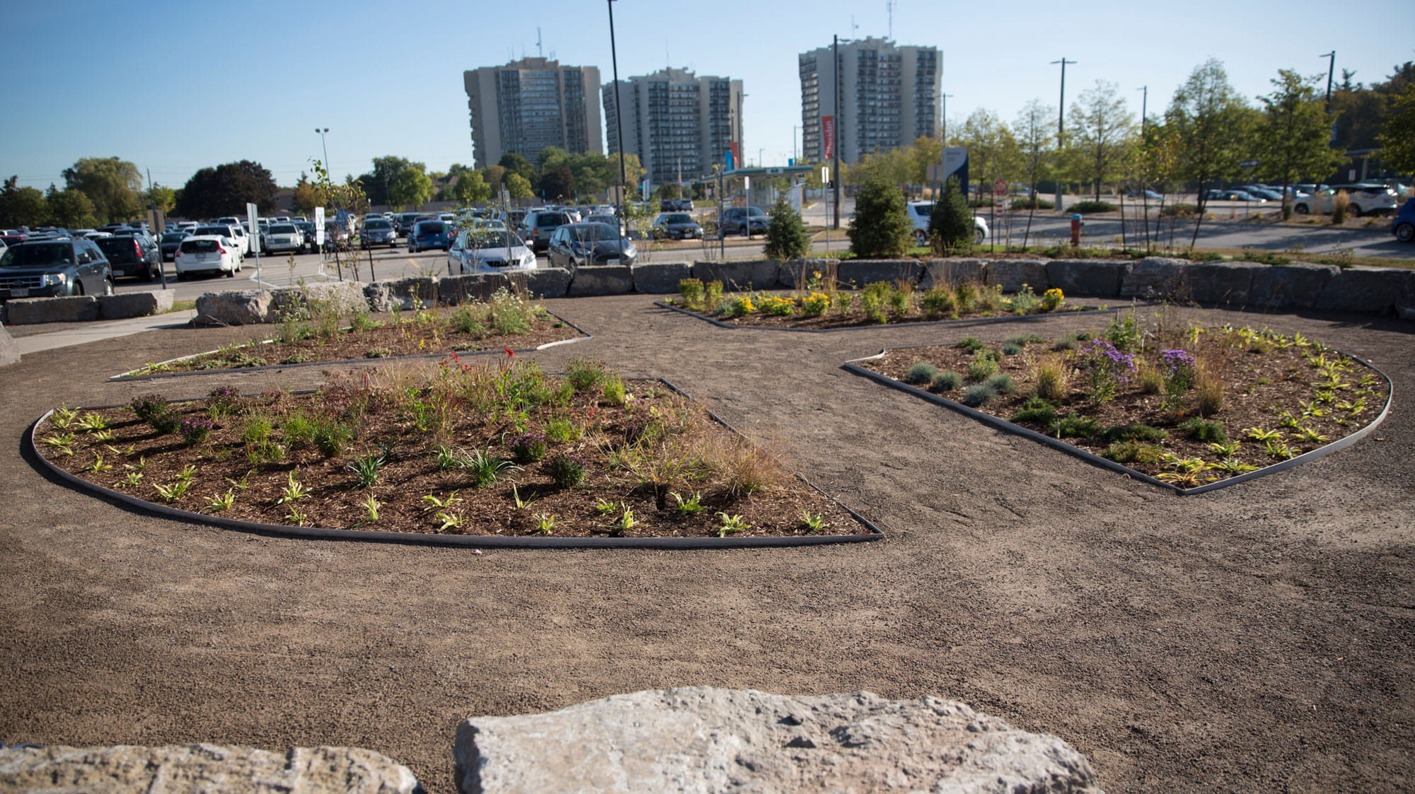 The Medicine Wheel Garden at Sheridan's Trafalgar Road Campus