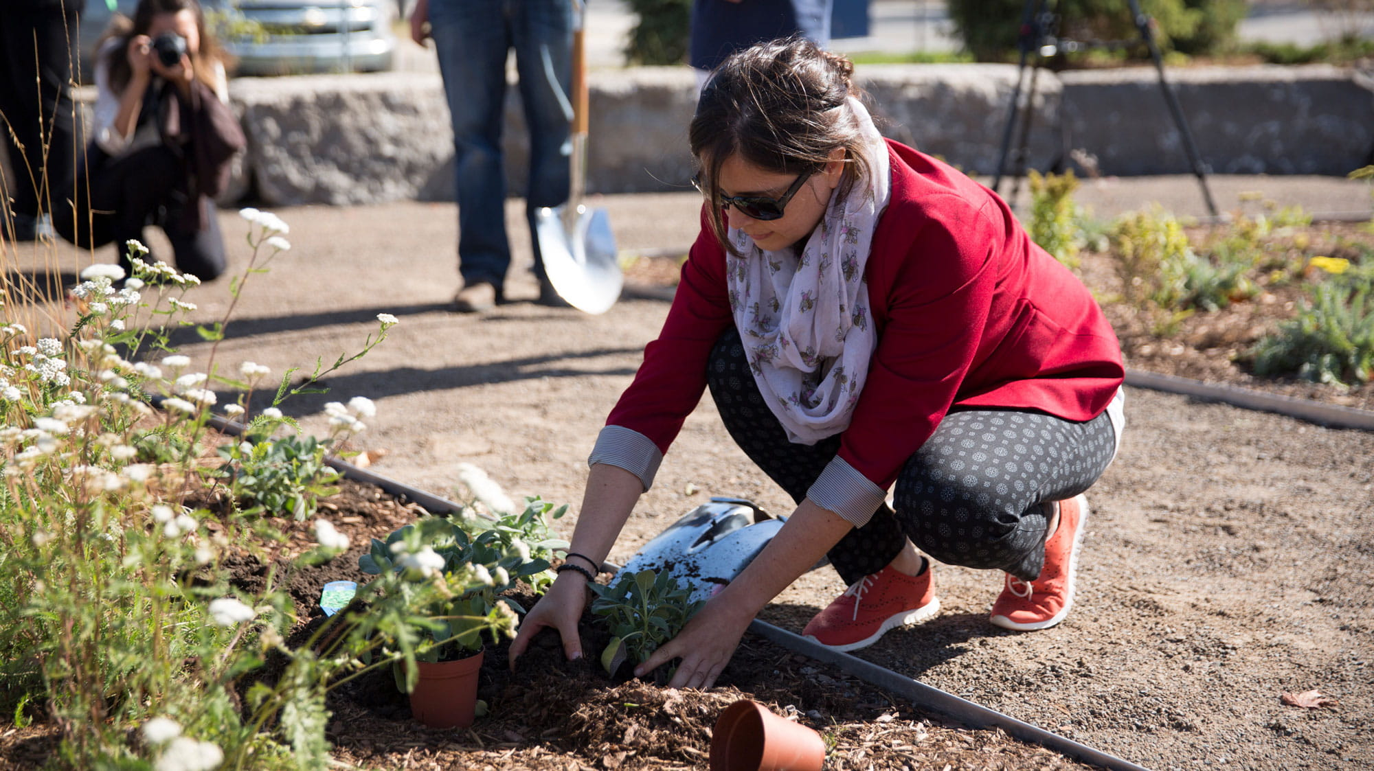 A woman kneeling beside a garden and planting flowers