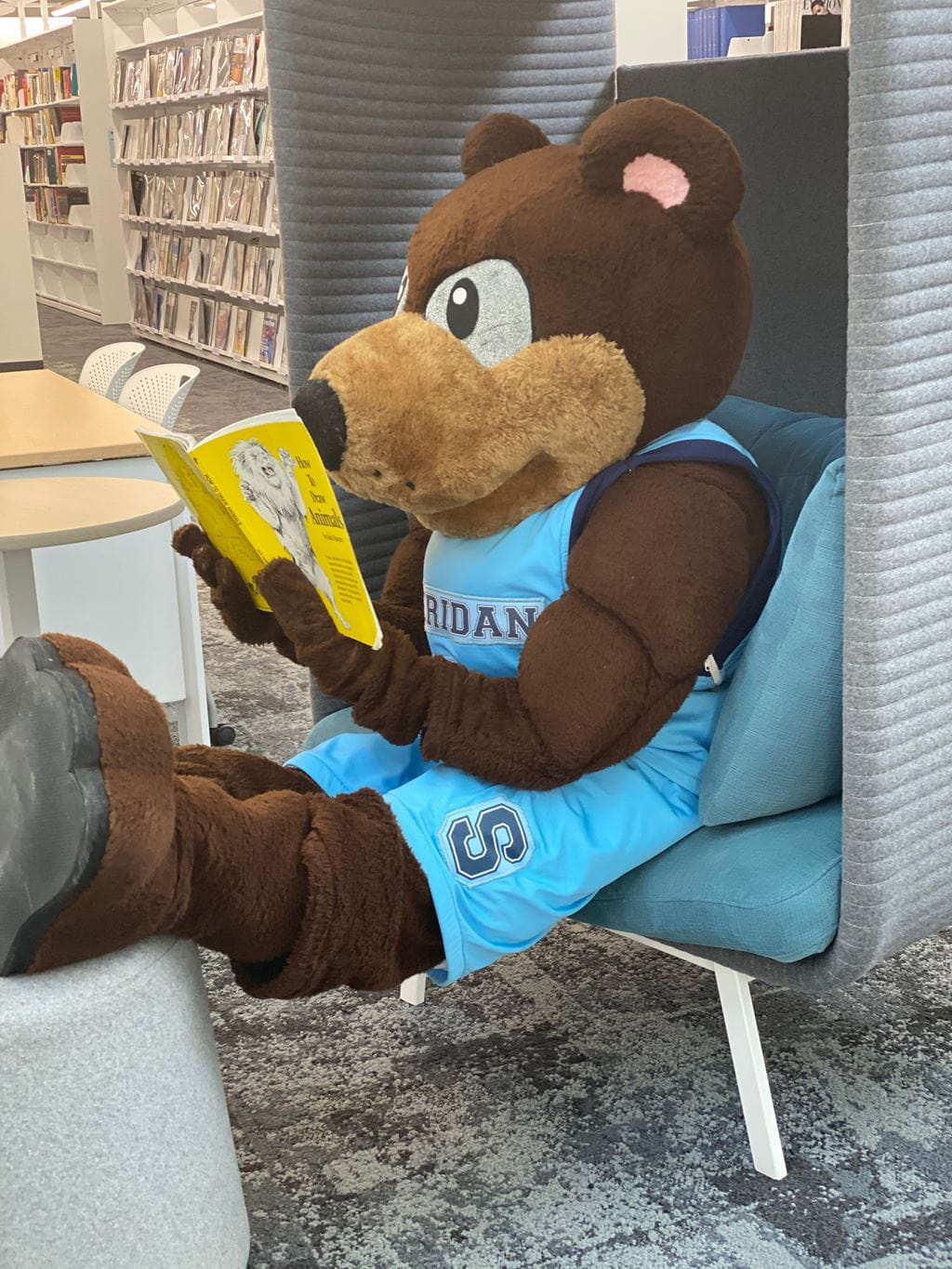 Bruno mascot reading a yellow book